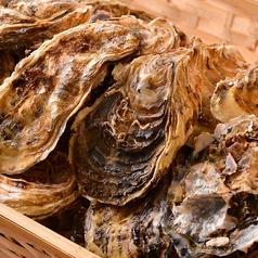 【絶品ぷりぷり牡蠣】生でも美味しい!焼いても美味しい!今が旬の牡蠣ご用意しました!
