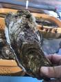 店長が自ら現地を訪問して視察して徹底的にこだわって厳選の牡蠣を仕入れています!