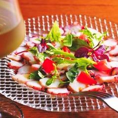 料理メニュー写真真蛸のソップレサータ バジル風味のトマトソース