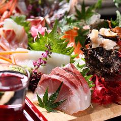 個室で味わう彩り和食 栄 有楽町駅前店の特集写真