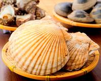 長井港から地魚、豊洲市場から浜焼き貝を厳選仕入れ!