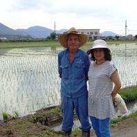 自家栽培の野菜や米使用