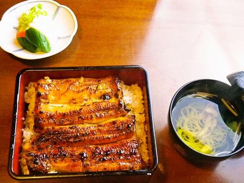 新鮮なうなぎを使った料理が食べられる。蒲焼や白焼などたっぷり味わえる。