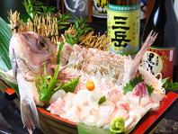 地鶏・黒豚だけでなく鮮魚にも自信あり。