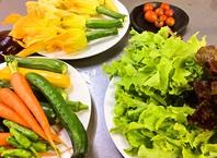 朝採れた自家製・地元野菜や新鮮な魚介を使ったお料理
