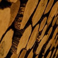 ≪個室の壁には姥目樫を敷き詰めて…≫