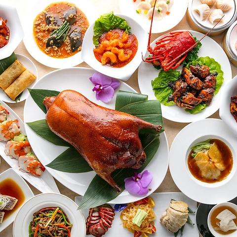 専用オーブンで焼きあがる北京ダック、芸術的な点心、伝統的な王朝の味を継承した料理