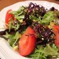料理メニュー写真彩りシーフードのグリーンサラダ