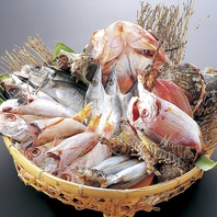 唐戸市場直送の鮮魚を使用