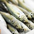 海老やイカ、ホタテなど人気の魚介串かつの素材も料理人が吟味した素材ばかりを使用しております。