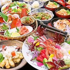 和食ダイニング 白鷺亭の写真