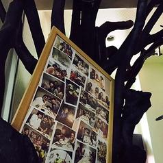 入り口入ったらすぐオシャレな木がお出迎え★お誕生日に人気なハイヴォレ!コース利用でお祝いデザートプレートがナント0円★