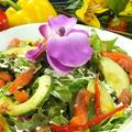 料理メニュー写真サーモンとアボガドのシーザーサラダ