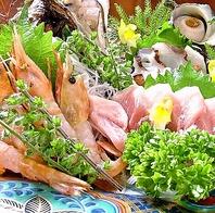 静岡港朝獲り鮮魚を直送。