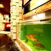 調理後も身が動く生簀で泳ぐ新線な鮮魚!
