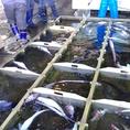 全国各漁港から選りすぐりの魚介をご提供します。