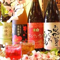 焼酎/果実酒飲み放題880円