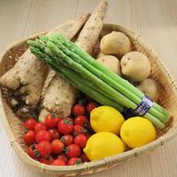 【四季折々の旬の味覚を。旬菜旬魚が織りなす絶品料理】