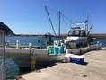 今日も漁港で皆さまのためにプライドをかけて漁に出ます!!