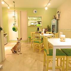 Cafe RoRoPaPa カフェ ロロパパの写真
