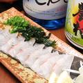 料理メニュー写真たこの刺身/鯛の昆布〆/鯛の刺身/かんぱちの刺身