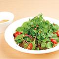 料理メニュー写真パクチーと5種のベビーリーフのサラダ