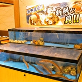 活きが良い魚介類がいる自慢の水槽♪
