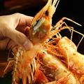 料理メニュー写真・特大ボタン海老刺・自家製 〆サバ刺、活〆鮫カレイなど