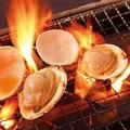 料理メニュー写真白ハマグリ(ホンビノス) (1個)