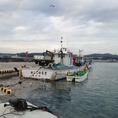 新鮮な魚を長井港から仕入れています。漁港、入札権をもっている居酒屋弥平。