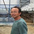 【谷野ファームのマルチリーフ】谷野さんは常時12種類のレタスを栽培し、毎回採れどきを狙って収穫し、ゆずってもらってます。水耕栽培でレタスを育てており。野菜は育つ段階によって必要とする栄養素が変わるため、水耕栽培は栄養素が調整しやすいので適した育て方。病気を防ぐために、土耕ではなく水耕栽培にしています