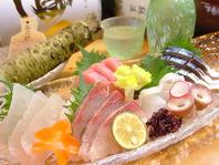 新鮮な旬魚×わさび