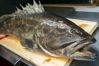 黒毛和牛・高級食材・高級魚を単品×コース料理で…!