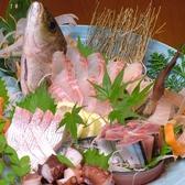 県産の新鮮なお魚を是非ご堪能ください♪