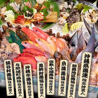 地魚料理を手ごろな価格で美味しく。