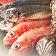 豊洲で仕入れる旬の魚・自家栽培の100%無農薬野菜