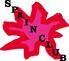 月島スペインクラブのロゴ