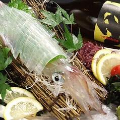 博多魚がし 海の路 天神店特集写真1