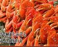 料理メニュー写真☆5大オプション!★☆豪華カニ&エビ SET★☆  お一人様+1000円(税抜)