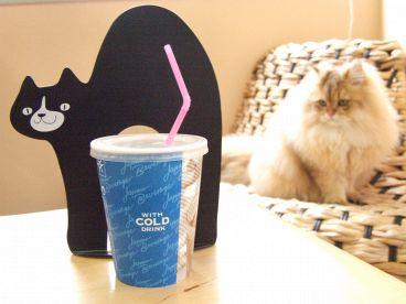 Cat Cafe ねころびのおすすめ料理1