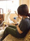 Cat Cafe ねころびのおすすめ料理3