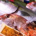 店主が自ら市場で仕入れる近海の海産物がリーズナブルに食べられます◎