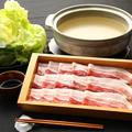 料理メニュー写真悠味豚のサラダしゃぶしゃぶ