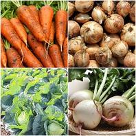 北海道産がいっぱい!札幌駅で食べる旬の日替わり野菜♪