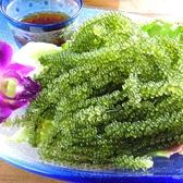 沖縄料理 うさぎやのおすすめ料理2