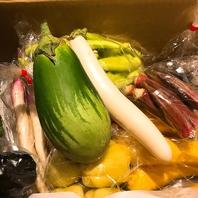 珍しいお野菜も多数ございます