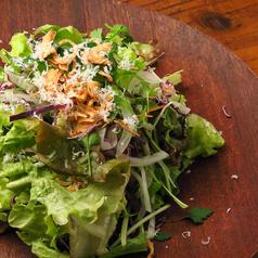 料理メニュー写真ルッコラとチーズのサラダ