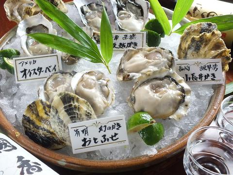 ぷりぷりの牡蠣の心臓を活かしたまま開ける【牡蠣開け師】の牡蠣をお楽しみください