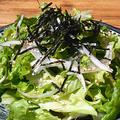 料理メニュー写真韓国風チョレギサラダ