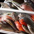 海桜 烏丸のおすすめ料理1